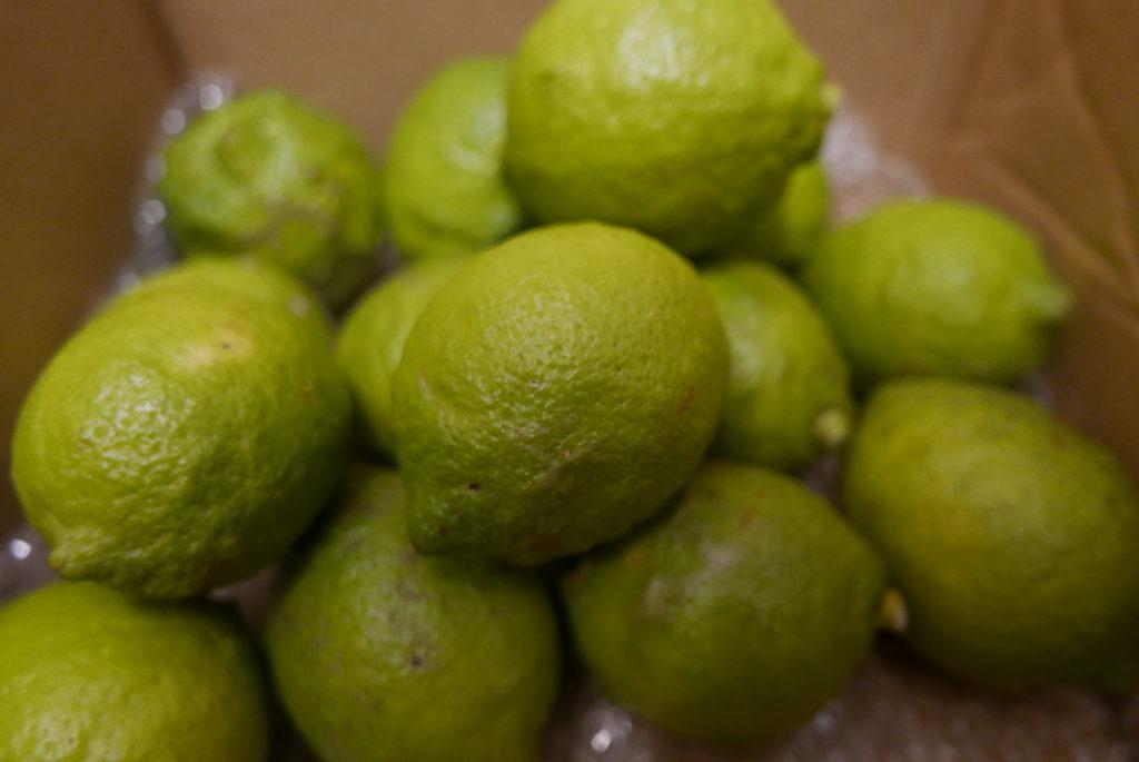 小豆島グリーンレモン